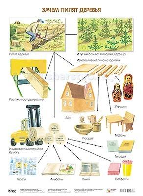 Мозаика-Синтез Обучающий плакат Зачем пилят деревья