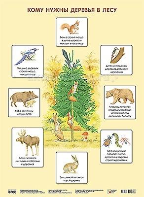 Мозаика-Синтез Обучающий плакат Кому нужны деревья в лесу