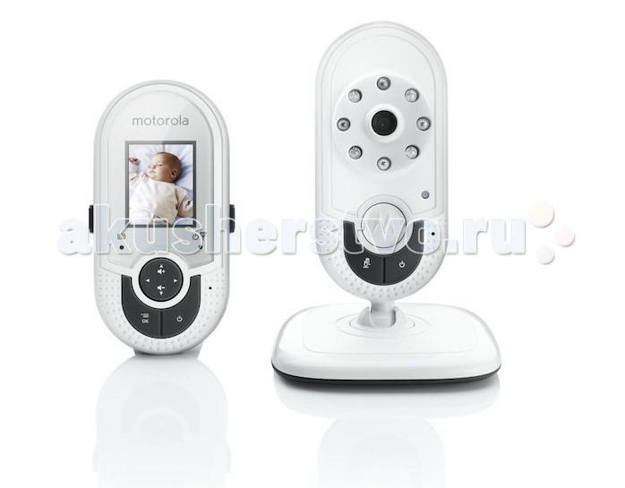 Motorola Видеоняня MBP621