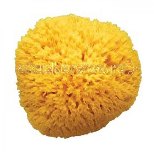 Мочалка Ok Baby Honeycomb 10 смHoneycomb 10 смМочалка Ok Baby Honeycomb 10 см прекрасно подходит для купания как взрослых так и детей.   Губка Honeycomb по праву считается «Королем губок».  Губка Honeycomb чрезвычайно хорошо впитывает воду, не вызывает аллергических высыпаний, хорошо пенится, не сушит кожу и позволяет экономно расходовать средства для душа.<br>