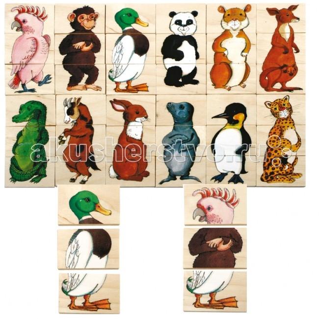Деревянная игрушка Beleduc Развивающий Пазл Пин-Гу-Дил 16108Развивающий Пазл Пин-Гу-Дил 16108Развивающий Пазл Пин-Гу-Дил Beleduc 16108  Развивающая игра деревянная для малышей.   В этой игре ребенку предлагается собрать 12 деревянных пазлов с изображением хорошо ему известных животных.   Каждый пазл разделен на 3 части. На обратной стороне деталей — картинки с подсказками.   Игра полезна для развития образного мышления, учит правильно воспринимать связь между частью и целым; выстраивать комбинации; различать отдельные элементы по форме и цвету; развивает мелкую моторику руки.   Пазлы Beleduc, изготовленные из русской березы, всегда особенные, они объединяют не только гениальные идеи с эксклюзивными иллюстрациями, но и креативность и качество. Все пазлы рассчитаны на разные возрастные категории, уровни сложности. Но все они очень красочные, увлекательные и главное познавательные.<br>