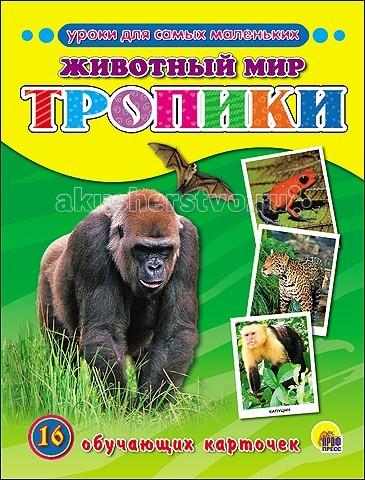 Проф-Пресс Энциклопедия Животный мир Тропики