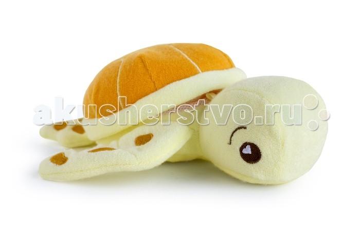 http://www.akusherstvo.ru/images/magaz/im72473.jpg