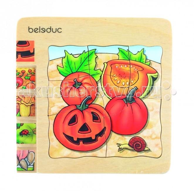 ���������� ������� Beleduc ����������� ���� ����� 17051
