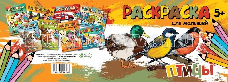 Раскраска White &amp; Green ПтицыПтицыРаскраска Вайт энд Грин Птицы поможет ребёнку подготовить руку к письму и изучить цвета.   Раскраски этой серии способствуют развитию мелкой моторики,внимания и усидчивости.  Количество страниц: 10 Размеры: 15 x 21 см<br>