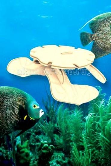 Деревянная игрушка МДИ Сборная модель Черепаха