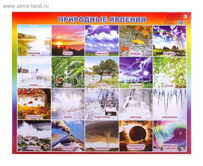 Алфея Плакат Природные явления