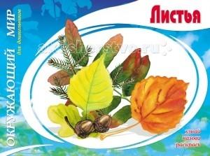 Раскраска ДетИздат Окружающий мир для дошкольников Листья