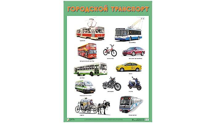 Мозаика-Синтез ПЛ Городской транспортПЛ Городской транспортМозаика-Синтез ПЛ Городской транспорт. Плакат большого формата Городской транспорт познакомит детей с различными видами транспорта, которые можно встретить в городе: автобусом, троллейбусом, велосипедом и другими.   Четкие, понятные рисунки обязательно заинтересуют ребят и помогут усвоить новые знания.<br>