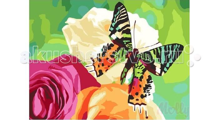 Раскраска Molly Картина по номерам Нектар цветка 40х50 смКартина по номерам Нектар цветка 40х50 смКартина по номерам Molly Нектар цветка - это интеллектуальное рисование. Просто взяв в руки краски и, следуя нумерации на фрагментах картинки, вы создаете оригинальный рисунок.  Раскраска по номерам учит штриховать рисунки в заданных областях и раскрашивать их, не заходя за контур, концентрироваться на отдельных предметах, планировать свою деятельность.  Состав набора: холст из натурального хлопка на деревянном подрамнике (холст предварительно прогрунтован) нейлоновые кисти разного размера 3 шт. акриловые краски (устойчивые к выцветанию) крепление на стену акриловый лак (2 баночки). Размер: 40х50 см.<br>