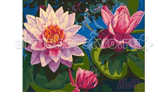Раскраска Molly Картина по номерам Цветущее озеро 40х50 см