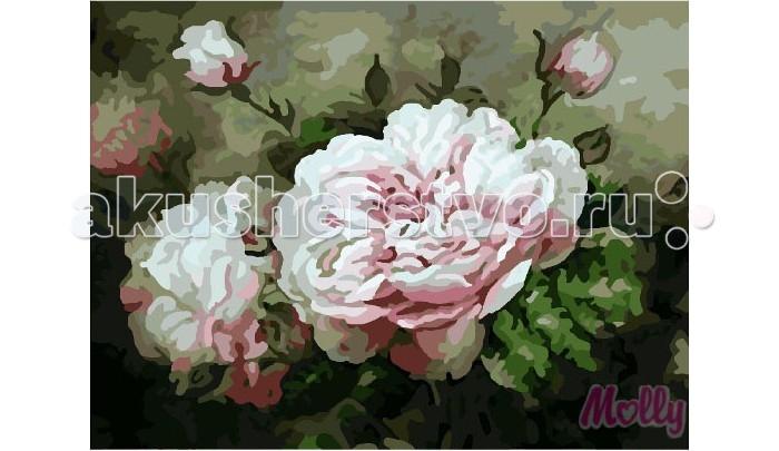 Раскраска Molly Картина по номерам Аромат лета 40х50 см