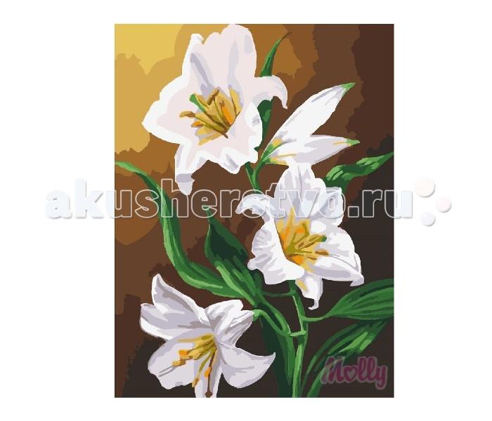 Molly Картина по номерам Три белых лилии 40х50 см