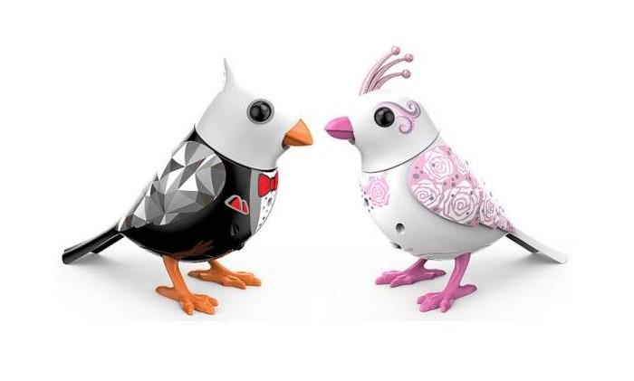 Интерактивная игрушка Digibirds Птички жених и невестаПтички жених и невестаПтички Digibirds жених и невеста - это уникальная интерактивная игрушка, которая непременно порадует вашего ребенка.   Если ваш ребенок увлекается изучением животного мира, то ему известно, что некоторые особи находят пару на всю жизнь. Для вас приготовили игровой набор, состоящий из таких 2 птичек. Это 2 птички – жених и невеста. От прочих птичек DigiBirds они отличаются своим уникальным дизайном, так как одеты в свадебное оперение!    Особенности:    Чтобы активировать птичек, достаточно на них подуть.  Активировать режим проигрывания мелодий и щебетания, достаточно посвистеть в свисток, который в комплекте.  Свисток с кольцом, поэтому ребенок может одевать его на палец.  Птичка может быть закреплена на свистке-кольце и использоваться как насест-переноска.  Птички могут двигаться во время проигрывания мелодий.  Если собрать несколько птичек вместе, то они синхронизируются и поют хором.  Синхронизация происходит со всеми персонажами DigiFriends, то есть это могут быть и пингвины, и совы.  Чтобы номер удался, необходимо главного в хоре (это тот, кого включат первым) держать на удалении не более 15 см.     В наборе:    2 птички  свисток-кольцо  6 батареек LR44   Размер птички: 9х7,5 см<br>