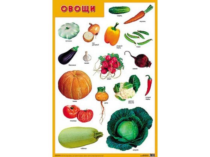 Мозаика-Синтез Обучающий плакат Овощи