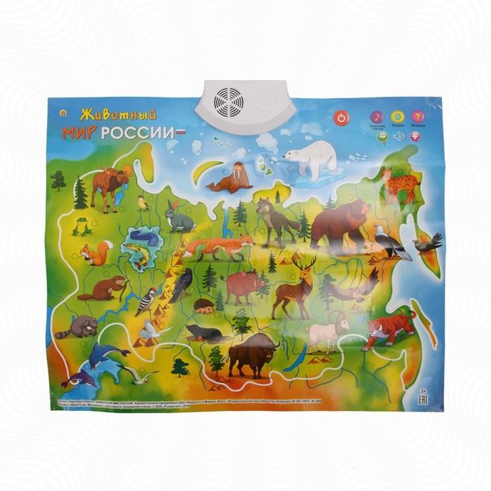 Рыжий кот Звуковой плакат Животный мир России