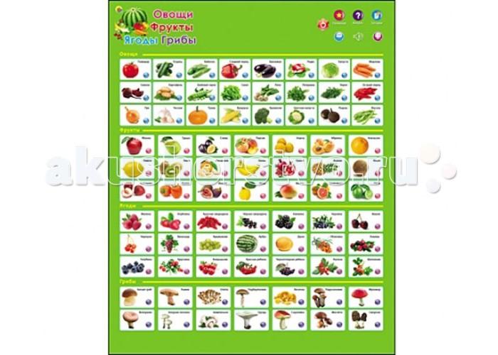 Рыжий кот Звуковой плакат Фрукты, овощи, ягоды, грибыЗвуковой плакат Фрукты, овощи, ягоды, грибыРыжий кот Звуковой плакат Фрукты, овощи, ягоды, грибы. Представляем Вашему вниманию уникальную новинку — развивающие звуковые плакаты, которые содержат стихотворения, занимательные и поучительные рассказы о животных, звуки, издаваемые ими, а также позволяют в игровой форме выучить алфавит, а затем проверить, насколько хорошо были усвоены полученные знания.   Плакаты просты и удобны в использовании, влагостойкие, подходят как для самостоятельного изучения, так и при помощи взрослых, располагаются на любой ровной поверхности, содержат кнопки регулятора громкости, а также режим автоматического выключения в целях экономии батареек и многое другое.   Развивайтесь, играя!<br>
