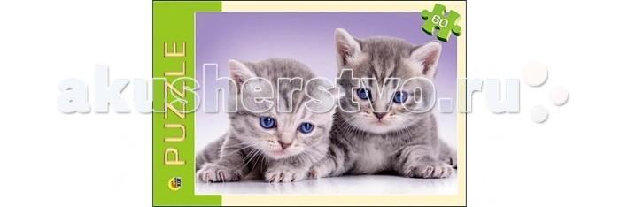 Рыжий кот Пазлы Забавные котята (60 элементов)