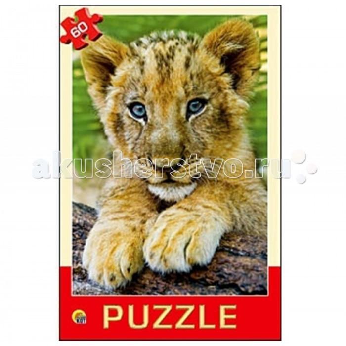 Рыжий кот Пазлы Любимое животное (60 элементов)Пазлы Любимое животное (60 элементов)Рыжий кот Пазлы Любимое животное (60 элементов). Популярная занимательная игра, которая развивает мелкую моторику рук, память, внимание посредством собирания яркой и красочной картинки, состоящей из мелких деталей. Огромное разнообразие изображений никого не оставит равнодушным!<br>