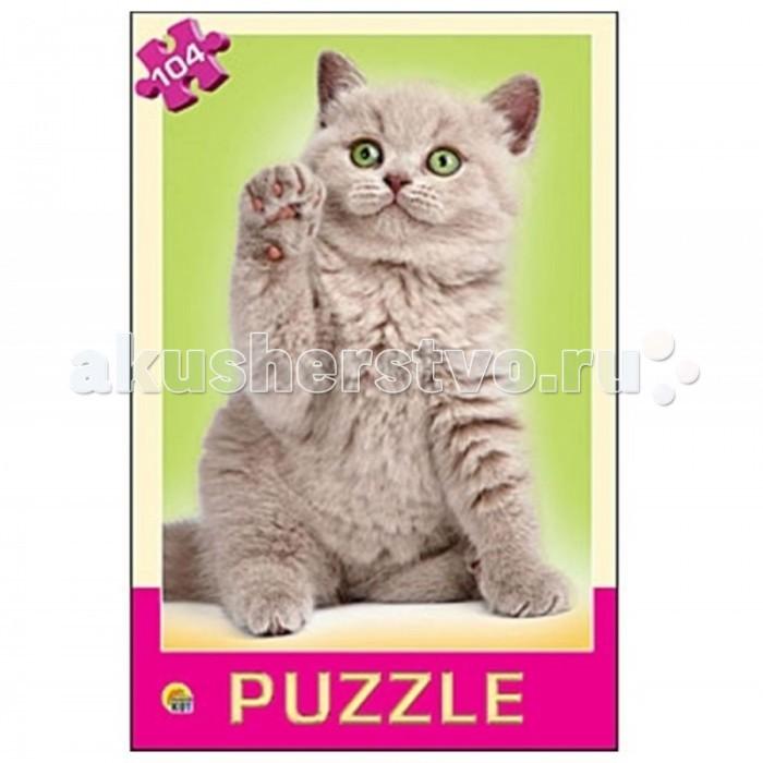 Рыжий кот Пазлы Самый любимый котёнок (104 элемента)Пазлы Самый любимый котёнок (104 элемента)Рыжий кот Пазлы Самый любимый котёнок (104 элемента). Популярная занимательная игра, которая развивает мелкую моторику рук, память, внимание посредством собирания яркой и красочной картинки, состоящей из мелких деталей. Огромное разнообразие изображений никого не оставит равнодушным!<br>