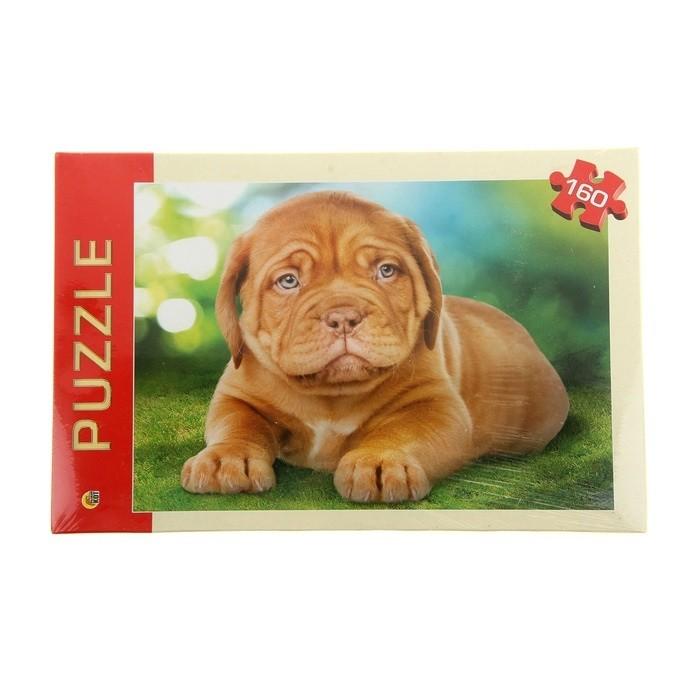 Рыжий кот Пазлы Любимый щенок (160 элементов)Пазлы Любимый щенок (160 элементов)Рыжий кот Пазлы Любимый щенок (160 элементов). Популярная занимательная игра, которая развивает мелкую моторику рук, память, внимание посредством собирания яркой и красочной картинки, состоящей из мелких деталей. Огромное разнообразие изображений никого не оставит равнодушным!<br>