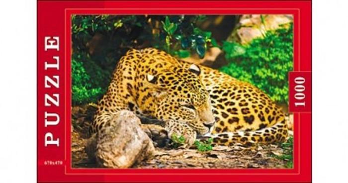 Рыжий кот Пазлы Леопард (1000 элементов)Пазлы Леопард (1000 элементов)Рыжий кот Пазлы Леопард (1000 элементов). Популярная занимательная игра, которая развивает мелкую моторику рук, память, внимание посредством собирания яркой и красочной картинки, состоящей из мелких деталей. Огромное разнообразие изображений никого не оставит равнодушным!<br>