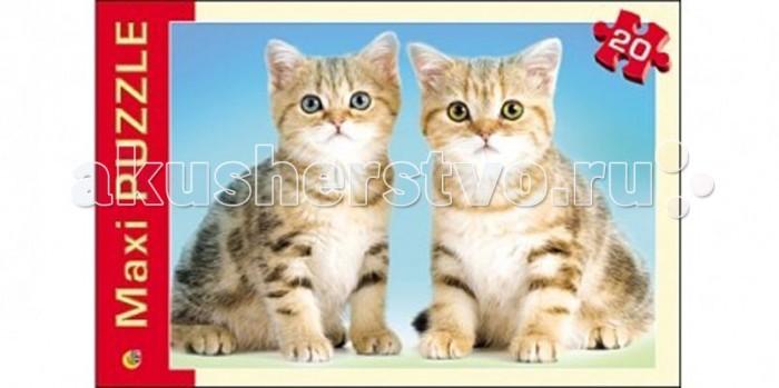 Рыжий кот Макси-пазлы Котята (20 элементов)