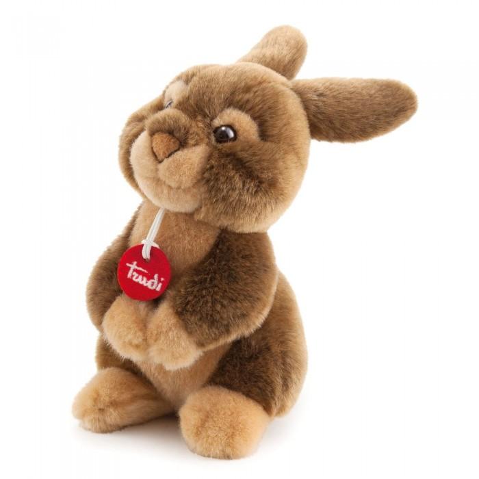 Мягкая игрушка Trudi Заяц Марселло 22 смЗаяц Марселло 22 смМягкая игрушка Trudi Заяц Марселло 22 см. Для детей от 1 года.  Мягкий темно-охровый Марселло станет верным другом для вашего малыша. Его пушистая шерстка приятная на ощупь, а экологически чистые материалы, из которых сделана игрушка, совершенно безопасны для здоровья. Вы можете взять Марселло с собой на прогулку, ведь игрушка неприхотлива к стирке, а самое главное — она не выгорает на солнце, долго оставаясь как новая.  Заяц может стать также прекрасным подарком для подруги или девушки, ведь так приятно получить в подарок прекрасную плюшевую игрушку от итальянского бренад Trudi, принадлежность к которому указана на специальной подвесочке на шее у Марселло!   Размер: 22 см<br>