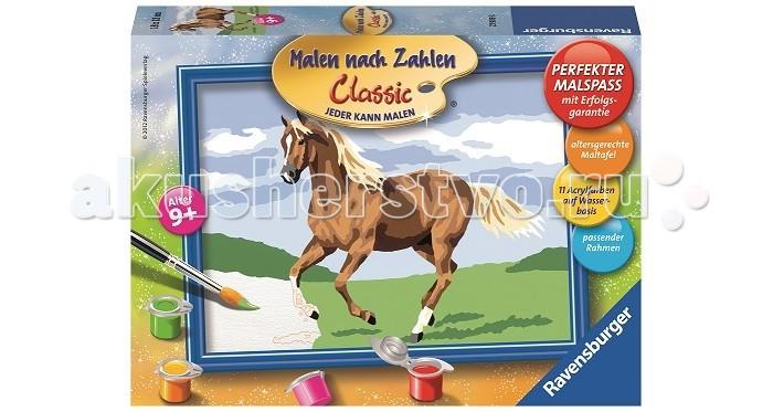 Ravensburger по номерам Лошадь в поле