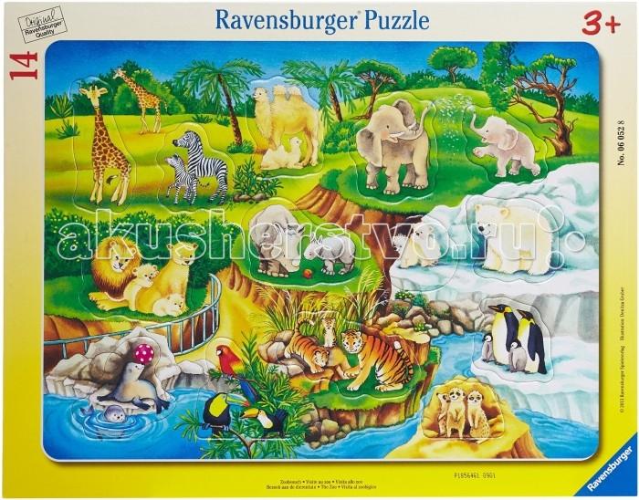 Ravensburger ���� ������� 14 ���������