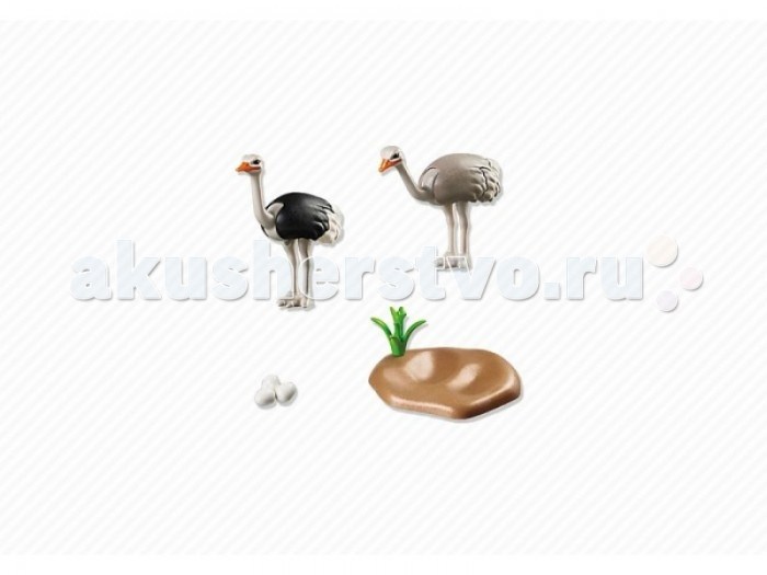 Конструктор Playmobil Страусы с гнездомСтраусы с гнездомКонструктор Зоопарк Playmobil Страусы с гнездом  Животные могут поднимать и опускать голову. У взрослых подвижны все части тела.<br>