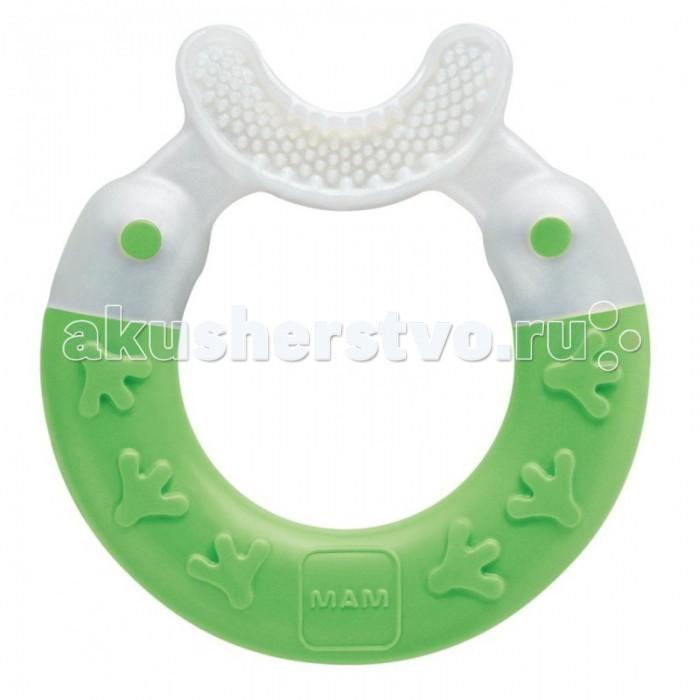 Прорезыватель MAM Bite&amp;Brush 3+Bite&amp;Brush 3+Волшебный прорезыватель Bite & Brush от фирмы MAM облегчит прорезывание первых зубок, которые доставляют больше всего неудобств малышу. Прорезыватель не только массирует и успокаивает чувствительные десны ребенка, но и чистит его первые зубы. Различные осязательные формы позволяют отвлечь малыша от прорезывания, и дают ощущение комфорта.   Чтобы разработать прорезыватели, дизайнеры MAM тесно сотрудничали с детскими психологами. Прорезыватели от MAM не только приносят облегчение при прорезывании зубов; они также тренируют чувства осязания и помогают активному обучению.<br>