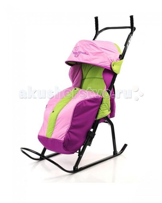 Санки-коляска R-Toys Кенгуру-1