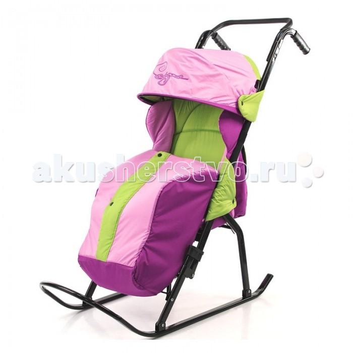 Санки-коляска R-Toys Кенгуру-2