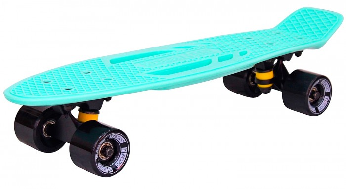 R-Toys ��������� Skateboard Fishbone � ������ 22