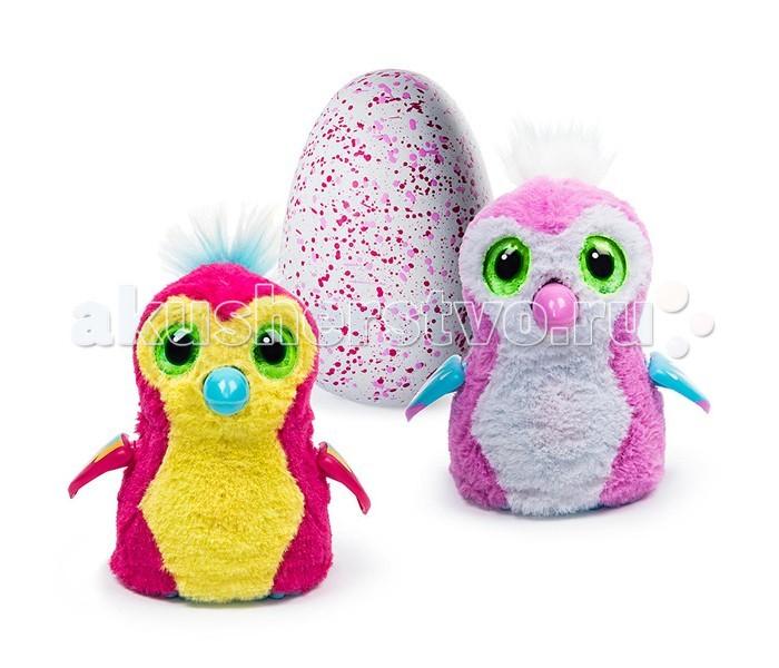 Интерактивная игрушка Spin Master Hatchimals Пингвинчик вылупляющийся из яйца
